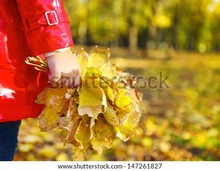 little girl holding autumn leaves in the beauty park. Close up