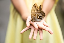 Little girl holding butterfly in her hand.