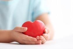 Little girl holding heart in her hands