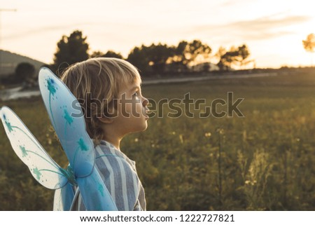Little girl in a butterfly costume in the field. Funny pictures of kids.