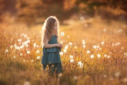 little girl in blue dress at sunset with dandelion at summer