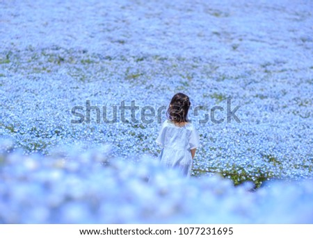 Little girl in blue dress stand on the filed enjoy with the blue flower (Nemophila or Baby blue eye) at Hitachi Seaside Park.