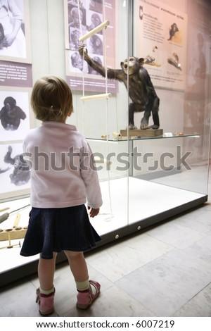 little girl in musem look on monkey