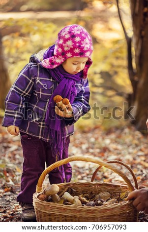 Little girl in the autumn forest. She collects the mushrooms in the basket.