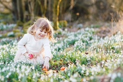 Little girl making Easter egg hunt in spring forest on sunny day, outdoors. Cute happy child with lots of snowdrop flowers and colored eggs. Springtime, christian holiday concept.