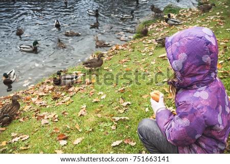 Little girl on grass feeds ducks in autumn park #751663141