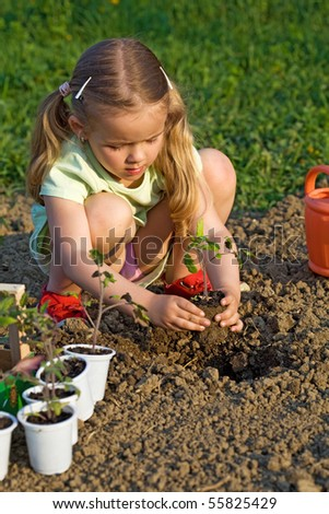 Little girl planting seedlings in the late afternoon sunlight - healthy food concept