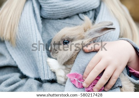 Little girl playing with grey rabbit outdoor. Children feeding animal. Family with animals #580217428