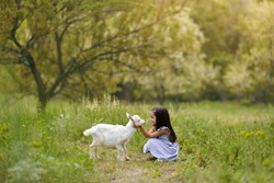 Little girl plays and huhs goatling in country, spring or summer nature outdoor. Cute kid with baby animal, countryside, forest, trod, glade background. Friendship of child and yeanling, image toned.