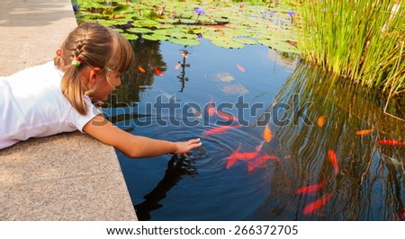 Shutterstock puzzlepix for Decorative pond fish crossword