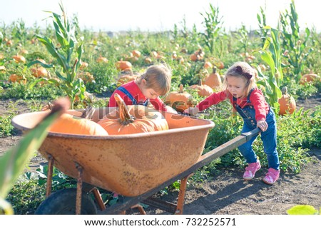 little girl pushing wheelbarrow ...
