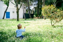 Little girl sits on green grass against the backdrop of a building and shows a tree. Back view