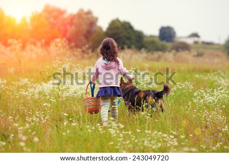Little girl walking with dog on the meadow back to camera and keeping the dog on leash