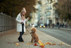 Little girl walks with her poodle on an autumn boulevard. Image with noise effects and selective focus.
