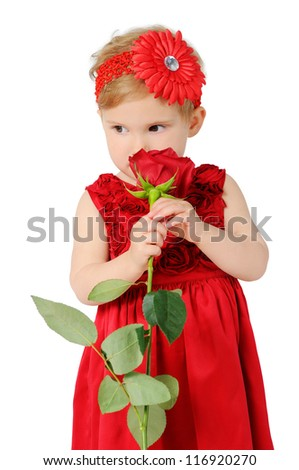 little girl with a rose, is isolated on a white background