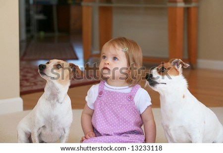 Little Girl With Two Dogs