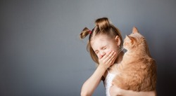 little girl 7-8 years old with a red cat in her arms suffers from allergies, sneezes from an allergic rhinitis, gray background