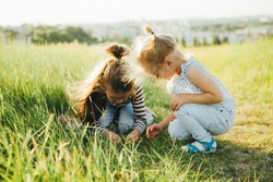 Little girls are looking at insects in the green grass on the field.