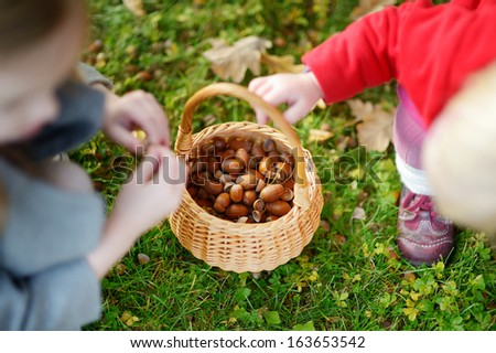 Little girls gathering acorns for crafting and playing