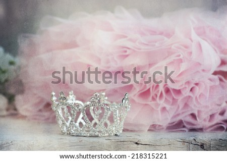 Stock Photo Little girls shiny crown