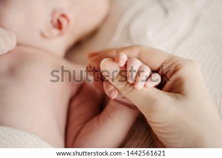 Little handle newborn baby in mom's big hand. Concept hrukosti and innocence #1442561621