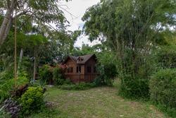 Little house in the big forest journey cloud sky landscapethe