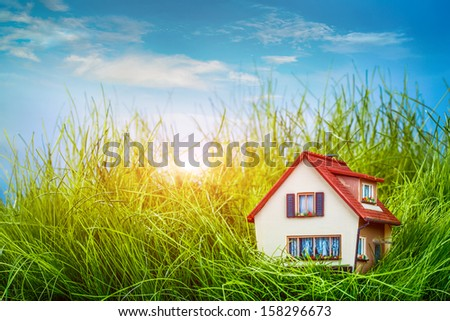 Little House on the green grass