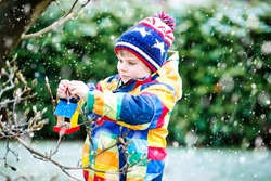 Little kid boy feeding birds in winter. Cute happy preschool child hanging colorful selfmade bird house on tree on frosty cold day. Preschooler in colorful warm clothes. Nature, empathy with animals.