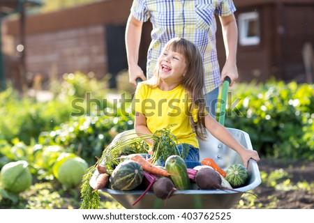 little kid girl inside wheelbarrow with vegetables in the garden