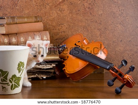 Little kitten on a table with a violin and antique books