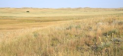 Little Missouri National Grassland in North Dakota, USA