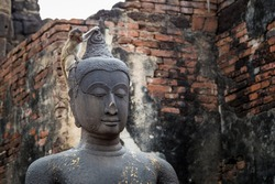 little monkey sitting on the head of oancient Buddha statue with the cracks on its face in the old temple Phra Prang Sam Yot in Lopburi, Thailand