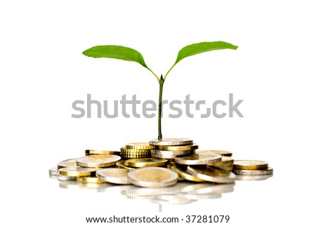 Little plant and coins
