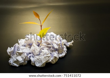 little plant grow up on Crumpled paper in concept everything is possible if you do it