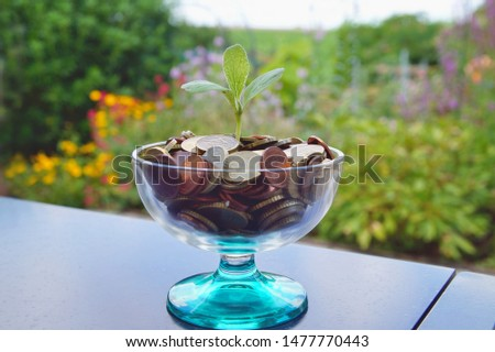 Little plant growing out of pile of euro coins. growing background . plant growing from coin jar. Money stack for business planning investment. Investing to green business. saving concept #1477770443
