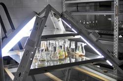 little plants in vitro genetic engineering laboratory experiment