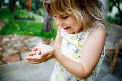 Little preschool girl holding small wild frog. Happy curious child watching and exploring animals in nature.