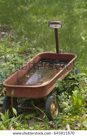 Little red wagon sitting in the grass full of standing water, an ideal breeding ground for mosquito larvae in summer