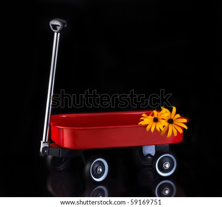 Little Red wagon with flowers