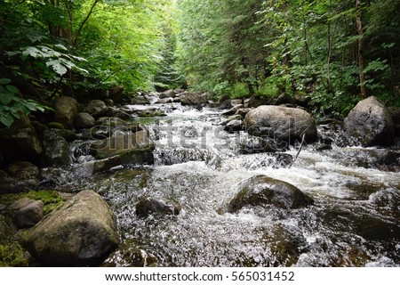 Little river in Quebec, Canada