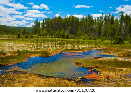 Little steaming pond along the firehole road in yellowstone national park