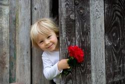 Little toddler child, blond boy, holding rose hiding behind ols wooden door