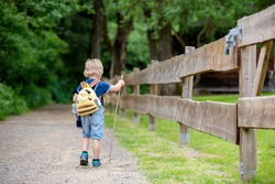 Little toddler child, boy, walking on little path next to a fence in the park, hiking on a summer day