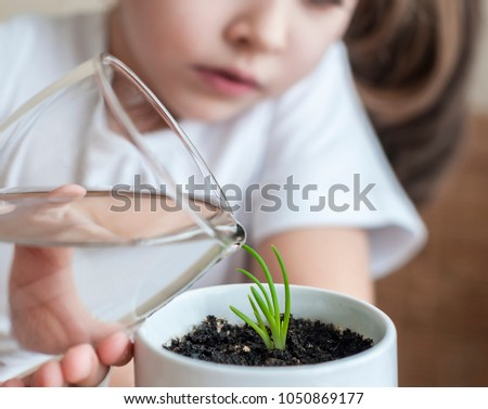 Little toddler girl is holding a transparent glass with water and watering young plant. Caring for a new life. The child's hands. Selective focus. Earth day holiday concept. World Environment Day