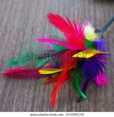 Little toy for cats with many colorful feathers, focus on the center of image