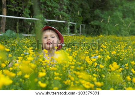 Little, white boy wearing blue cap plays between flowers of the meadow