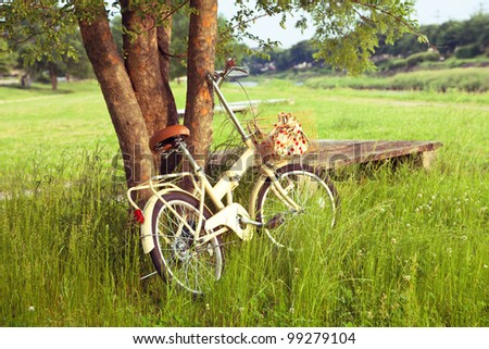 Little yellow bicycle standing on green meadow - Shutterstock ID 99279104