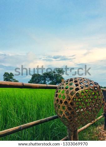 Livelihood of farmers