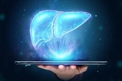 Liver hologram on a tablet, liver pain. Concept for technology, hepatitis treatment, donation, online diagnostics