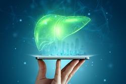 Liver hologram over smartphone, liver pain. Concept for technology, hepatitis treatment, donation, online diagnostics